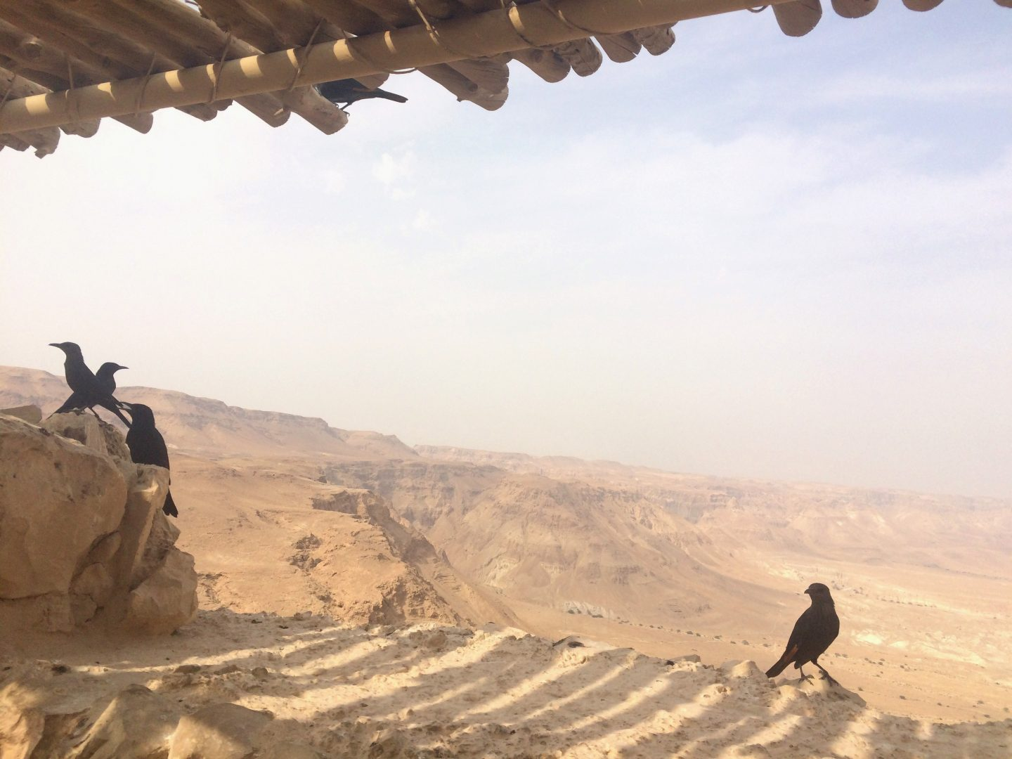 Day trip from Tel Aviv to Masada