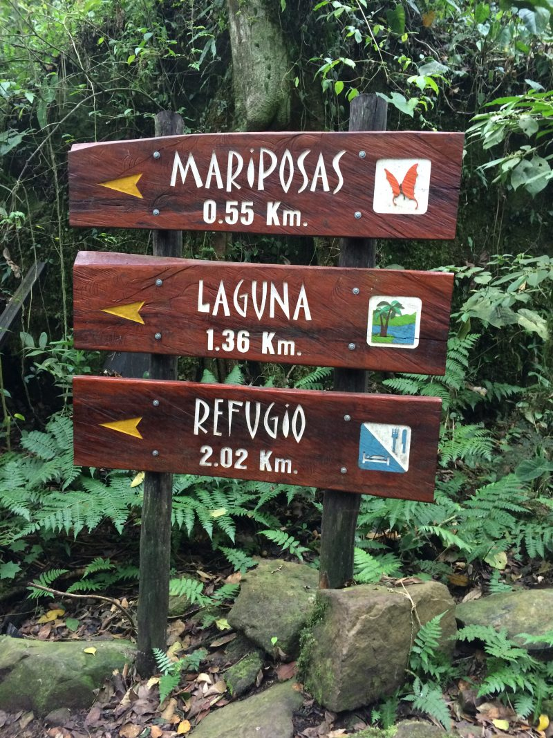 Chicaque trails