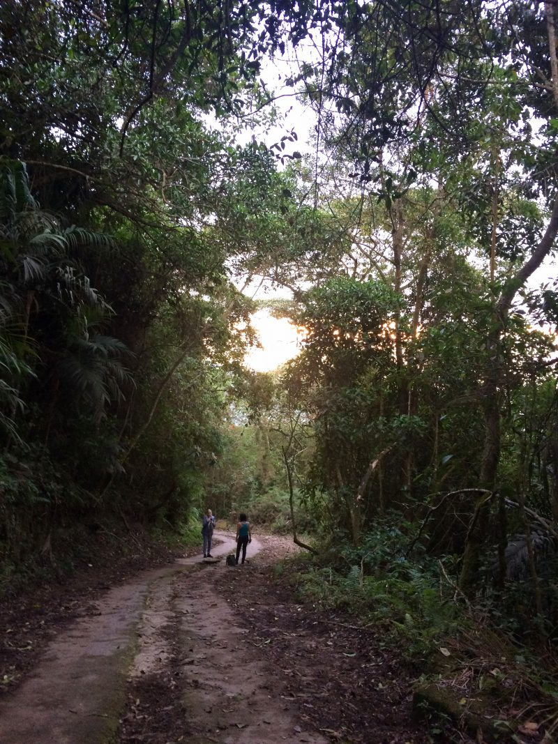 Path in Chicaque