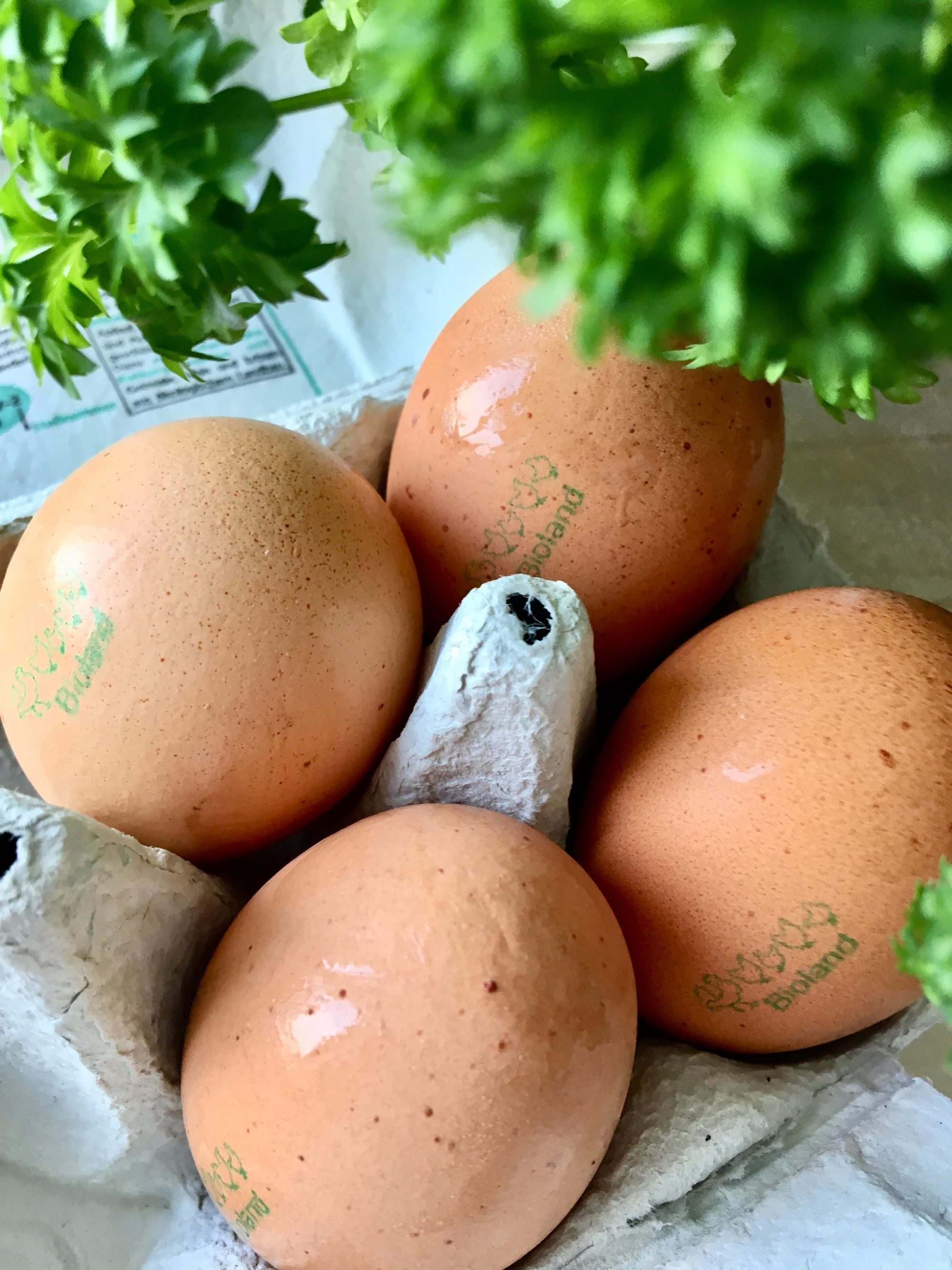 Eggs and Parsley